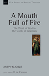 New Studies in Biblical Theology - A Mouth Full of Fire: The Word of God in the Words of Jeremiah (NSBT)