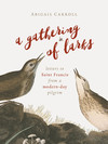 A Gathering of Larks: Letters to Saint Francis from a Modern-Day Pilgrim