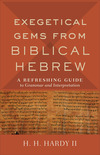 Exegetical Gems from Biblical Hebrew: A Refreshing Guide to Grammar and Interpretation