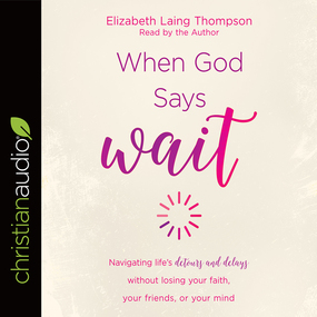 """When God Says """"Wait"""": Navigating life's detours and delays without losing your faith, your friends, or your mind by Elizabeth Laing Thompson..."""