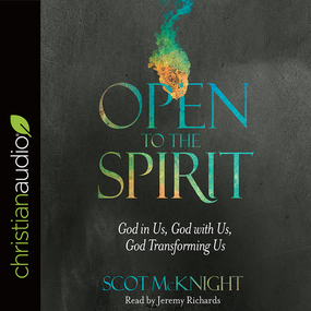 Open to the Spirit: God in Us, God with Us, God Transforming Us by Scot McKnight...