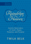 Raindrops from Heaven: Gentle Reminders of God's Power, Presence and Purpose