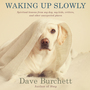 Waking Up Slowly: Spiritual Lessons from My Dog, My Kids, Critters, and Other Unexpected Places